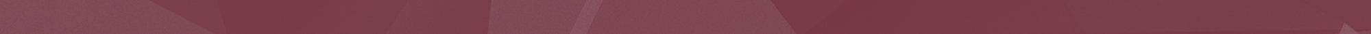 maroon strip with triangles